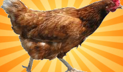 Chicken Clicker BETA 0.2